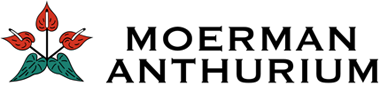 Moerman Anthurium Logo